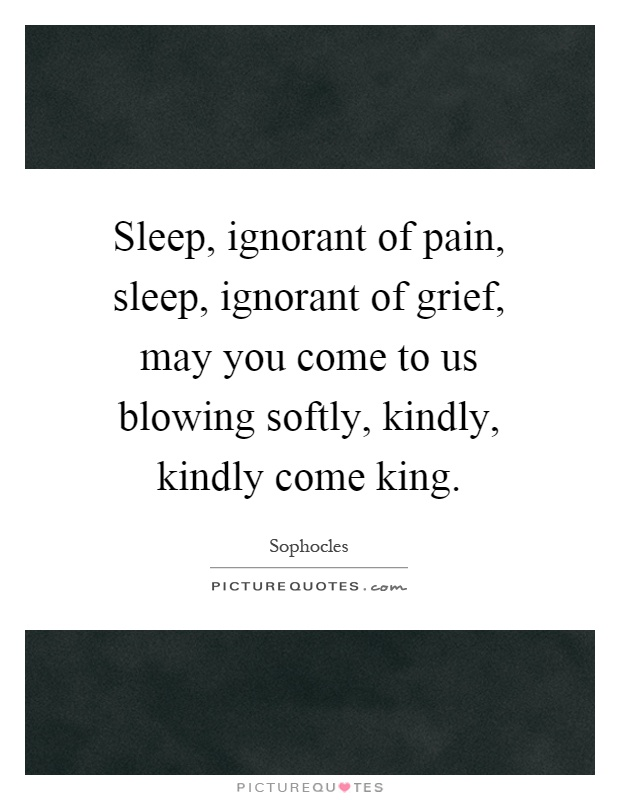 Sleep, ignorant of pain, sleep, ignorant of grief, may you come to us blowing softly, kindly, kindly come king Picture Quote #1