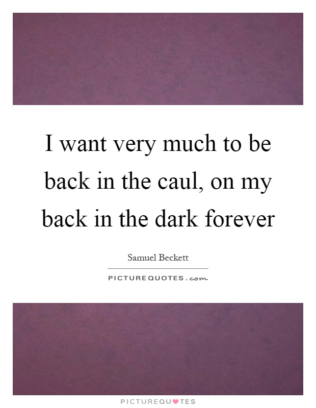 I want very much to be back in the caul, on my back in the dark forever Picture Quote #1