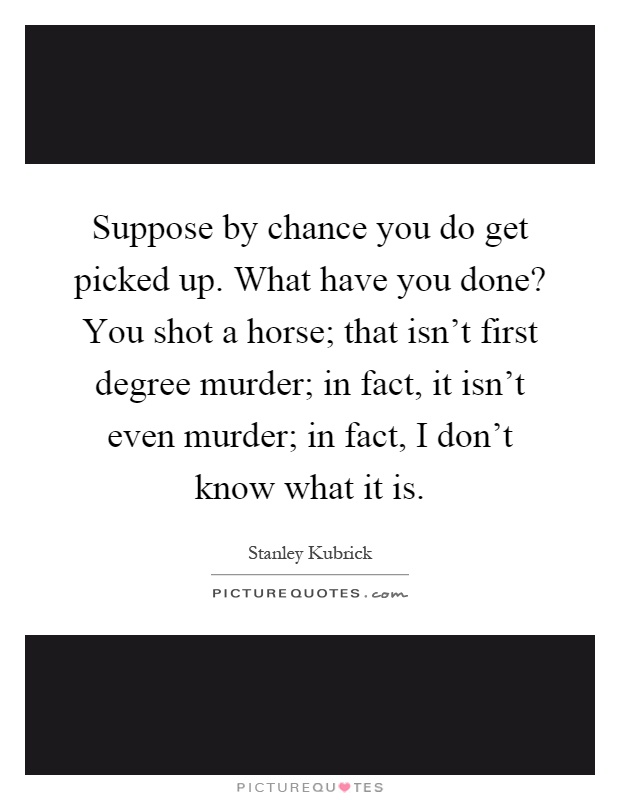 Suppose by chance you do get picked up. What have you done? You shot a horse; that isn't first degree murder; in fact, it isn't even murder; in fact, I don't know what it is Picture Quote #1