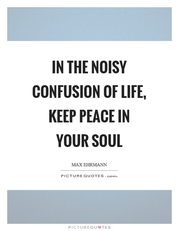 In the noisy confusion of life, keep peace in your soul Picture Quote #1
