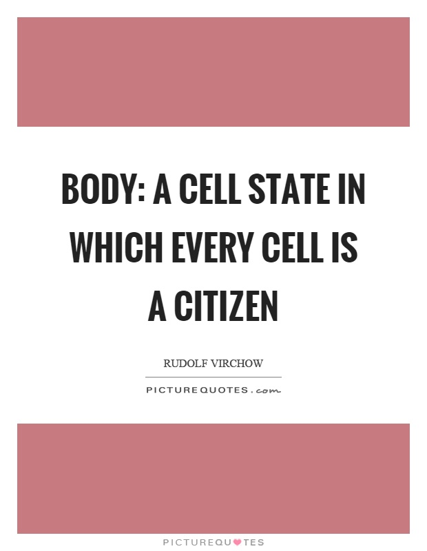 Body: A cell state in which every cell is a citizen Picture Quote #1