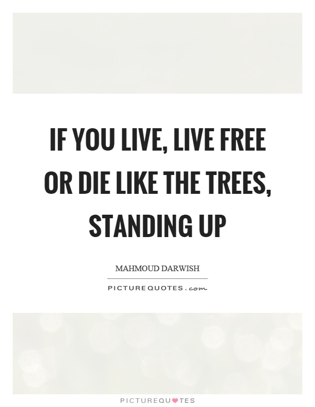If you live, live free or die like the trees, standing up Picture Quote #1
