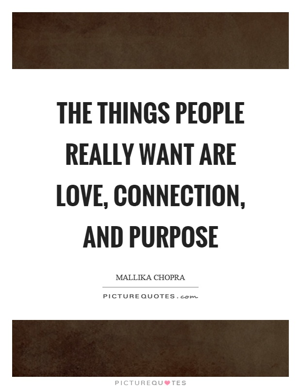 The things people really want are love, connection, and purpose Picture Quote #1