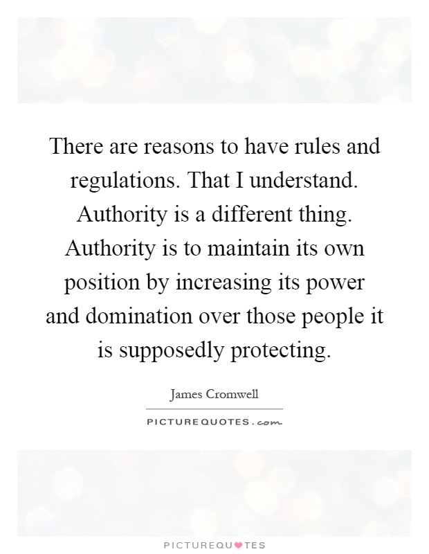 There are reasons to have rules and regulations. That I understand. Authority is a different thing. Authority is to maintain its own position by increasing its power and domination over those people it is supposedly protecting Picture Quote #1