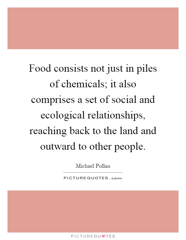 Food consists not just in piles of chemicals; it also comprises a set of social and ecological relationships, reaching back to the land and outward to other people Picture Quote #1