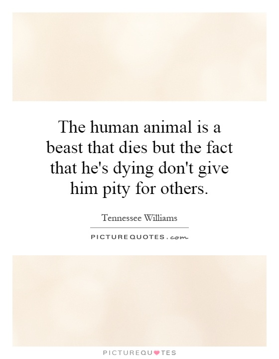 The human animal is a beast that dies but the fact that he's dying don't give him pity for others Picture Quote #1