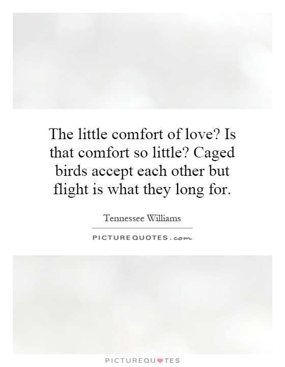 The little comfort of love? Is that comfort so little? Caged birds accept each other but flight is what they long for Picture Quote #1