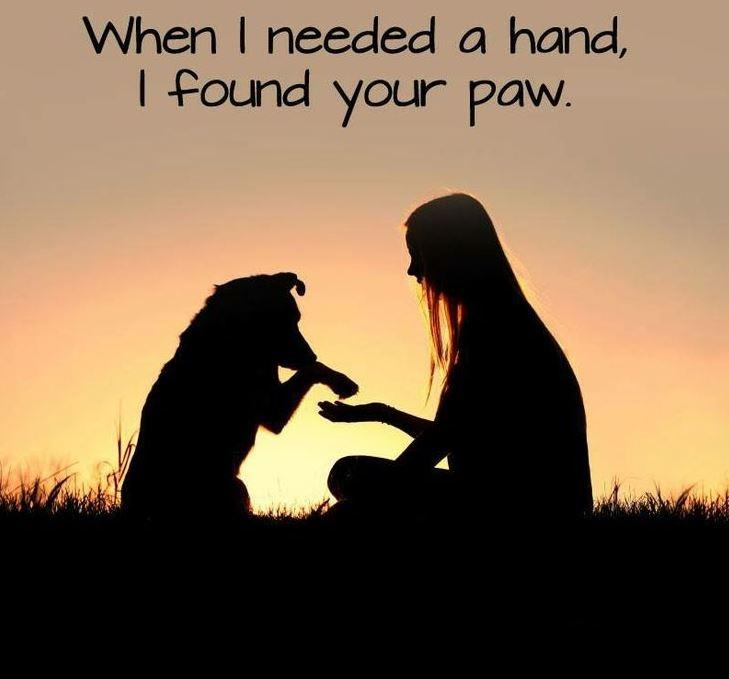 When I needed a hand, I found your paw Picture Quote #1