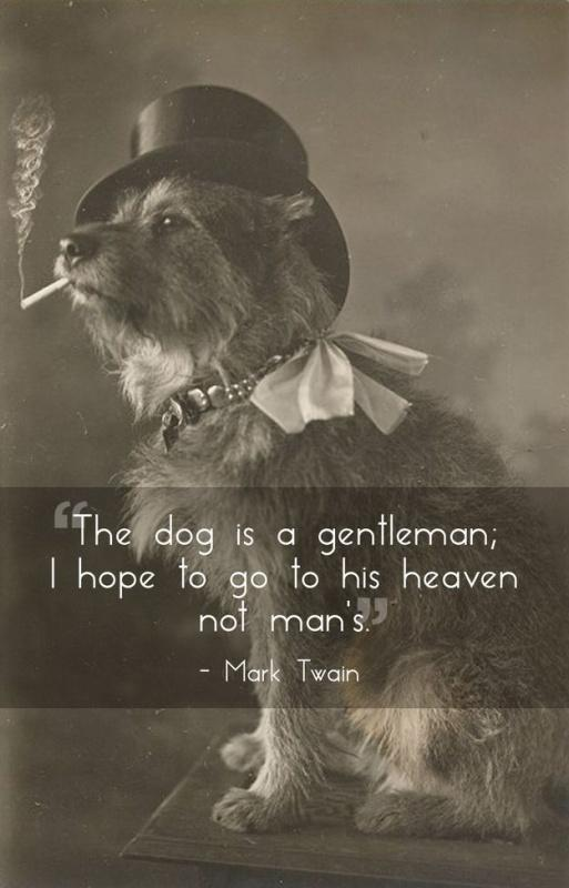 The dog is a gentleman; I hope to go to his heaven, not man's Picture Quote #1