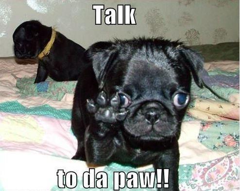 Talk to da paw! Picture Quote #1