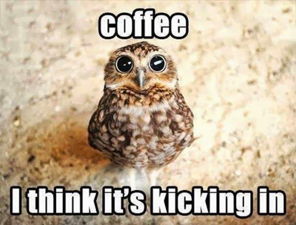 Coffee - I think it's starting to kick in Picture Quote #1