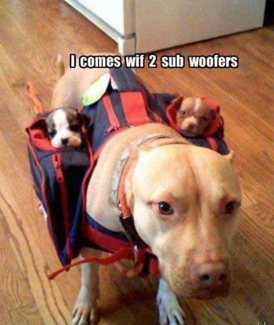 I comes with 2 sub woofers Picture Quote #1