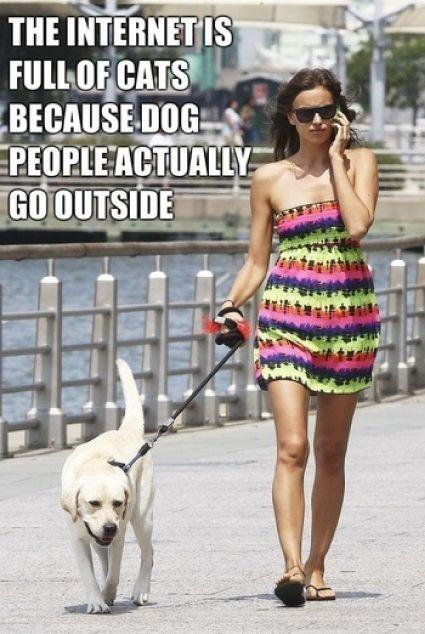 The internet is full of cats because dog people actually go outside Picture Quote #1