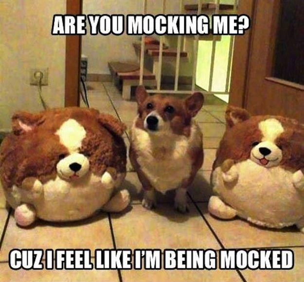Are you mocking me? Cuz I feel like I'm being mocked Picture Quote #1