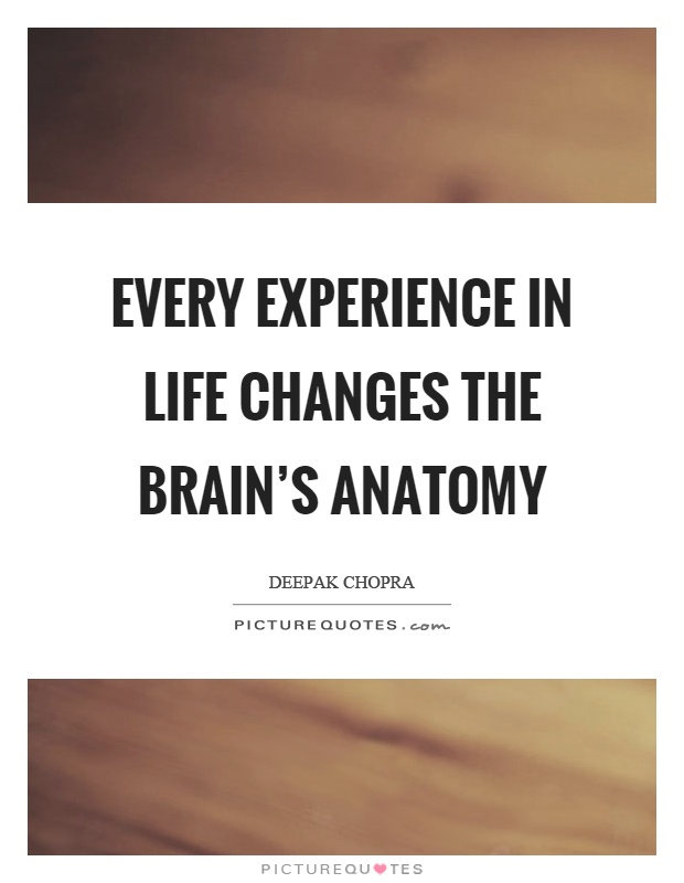 Every experience in life changes the brain's anatomy Picture Quote #1