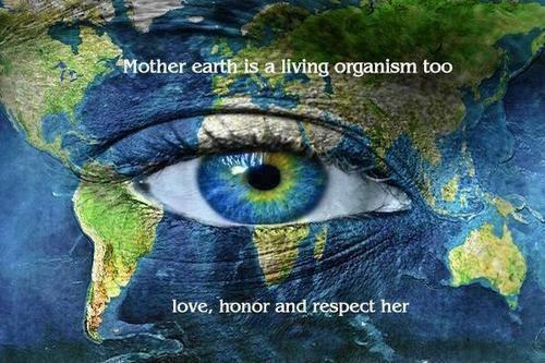 Mother Earth is a living organism too. Love, honor and respect her Picture Quote #1