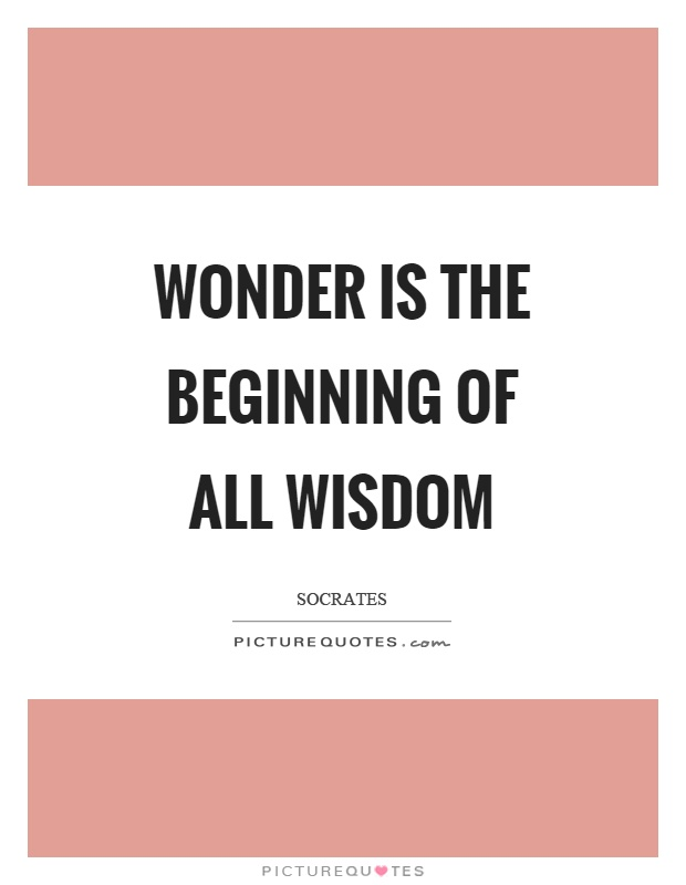 Wonder is the beginning of all wisdom Picture Quote #1