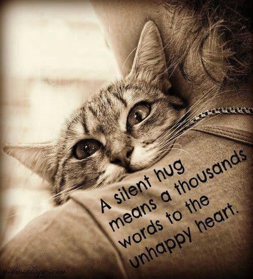 A silent hug means a thousand words to the unhappy heart Picture Quote #1