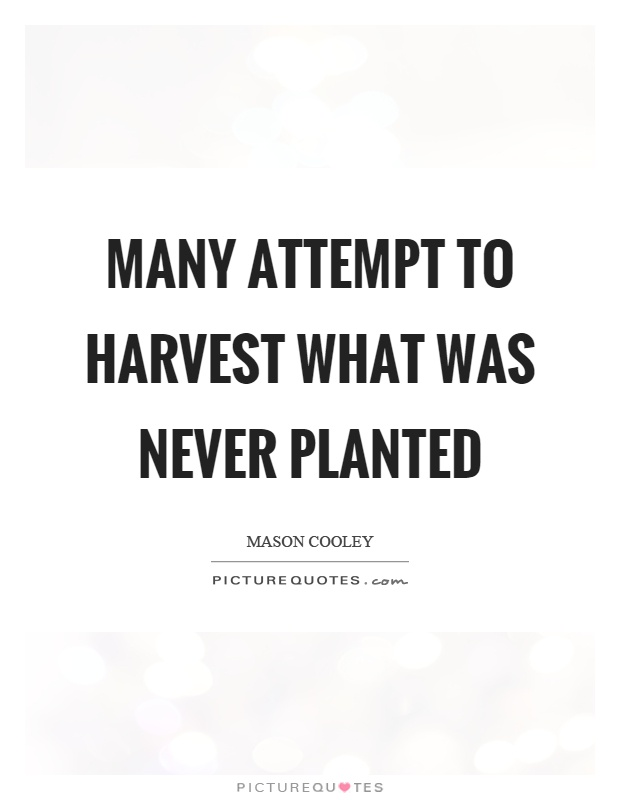 Many attempt to harvest what was never planted Picture Quote #1