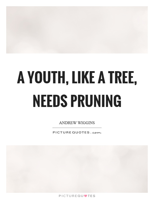 A youth, like a tree, needs pruning Picture Quote #1