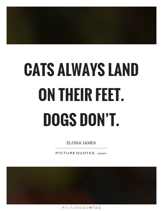Cats always land on their feet. Dogs don't Picture Quote #1
