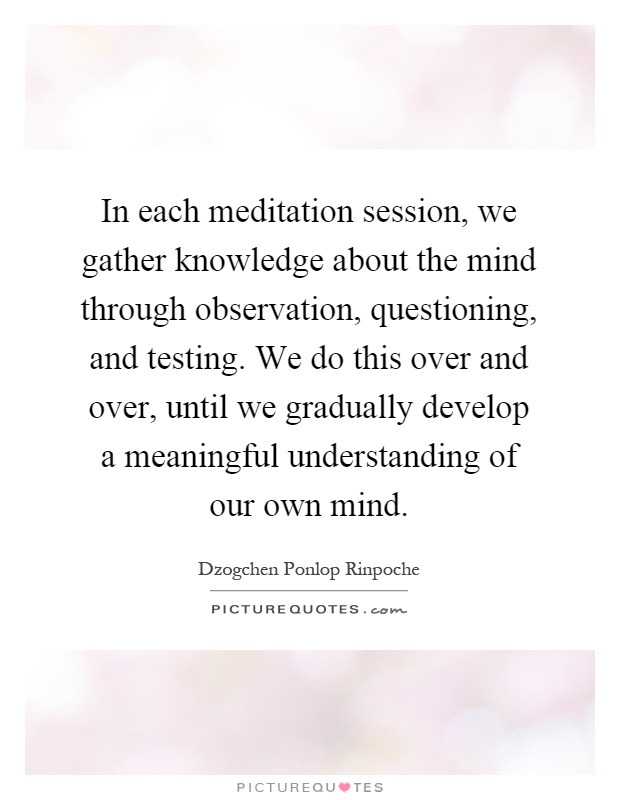 In each meditation session, we gather knowledge about the mind through observation, questioning, and testing. We do this over and over, until we gradually develop a meaningful understanding of our own mind Picture Quote #1