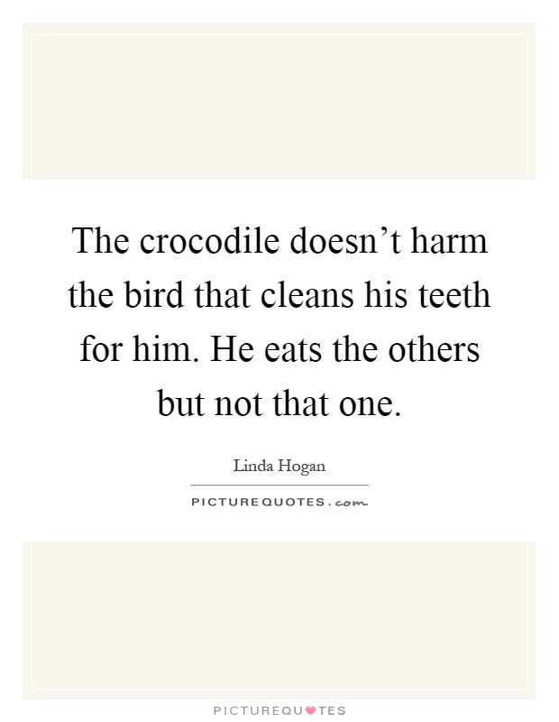 The crocodile doesn't harm the bird that cleans his teeth for him. He eats the others but not that one Picture Quote #1