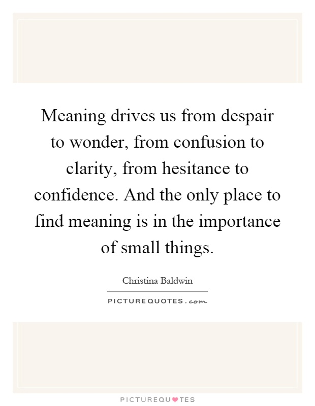 Meaning drives us from despair to wonder, from confusion to clarity, from hesitance to confidence. And the only place to find meaning is in the importance of small things Picture Quote #1