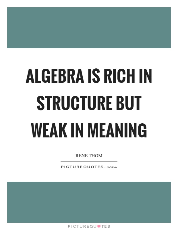 Algebra is rich in structure but weak in meaning Picture Quote #1