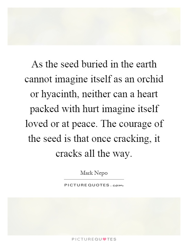As the seed buried in the earth cannot imagine itself as an orchid or hyacinth, neither can a heart packed with hurt imagine itself loved or at peace. The courage of the seed is that once cracking, it cracks all the way Picture Quote #1