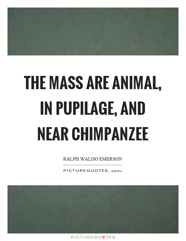 The mass are animal, in pupilage, and near chimpanzee Picture Quote #1