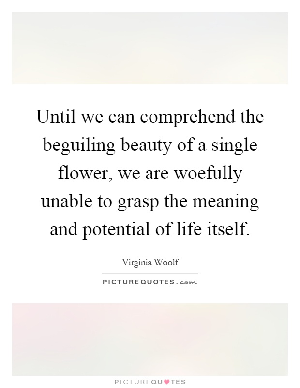 Until we can comprehend the beguiling beauty of a single flower, we are woefully unable to grasp the meaning and potential of life itself Picture Quote #1