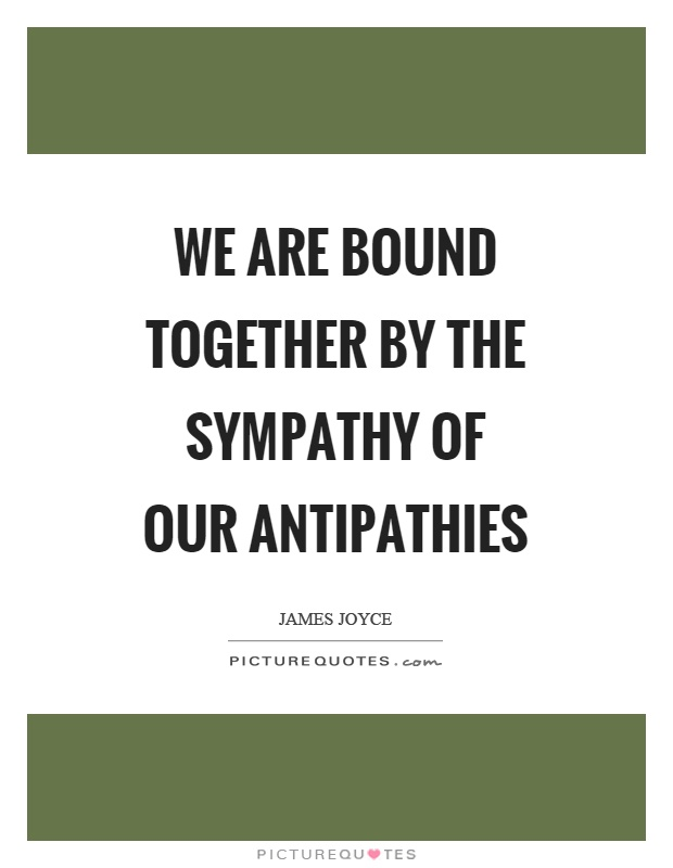 We are bound together by the sympathy of our antipathies Picture Quote #1