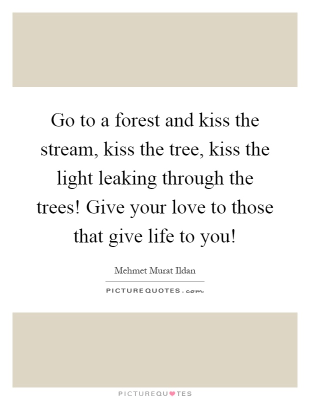 Go to a forest and kiss the stream, kiss the tree, kiss the light leaking through the trees! Give your love to those that give life to you! Picture Quote #1
