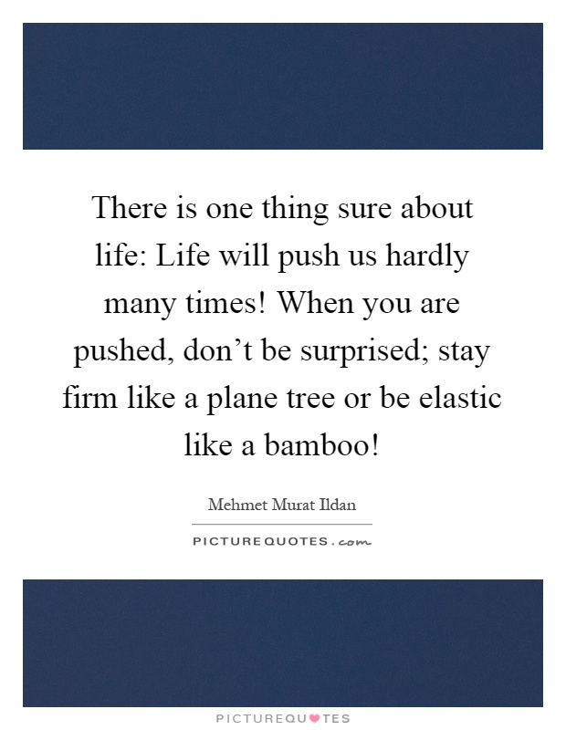 There is one thing sure about life: Life will push us hardly many times! When you are pushed, don't be surprised; stay firm like a plane tree or be elastic like a bamboo! Picture Quote #1