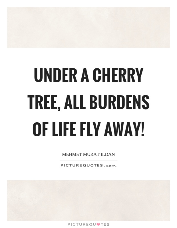 Under a cherry tree, all burdens of life fly away! Picture Quote #1