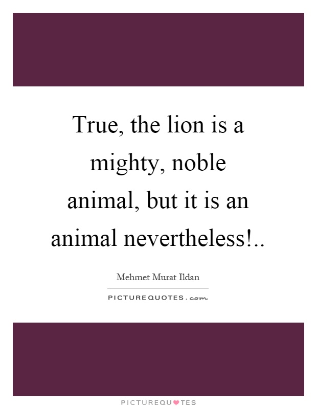 True, the lion is a mighty, noble animal, but it is an animal nevertheless! Picture Quote #1