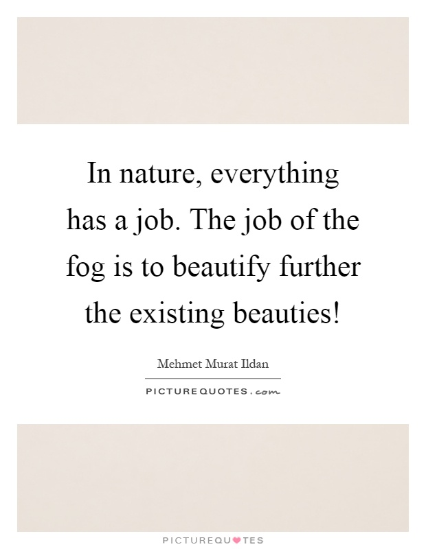 In nature, everything has a job. The job of the fog is to beautify further the existing beauties! Picture Quote #1