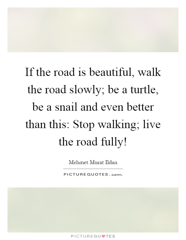 If the road is beautiful, walk the road slowly; be a turtle, be a snail and even better than this: Stop walking; live the road fully! Picture Quote #1