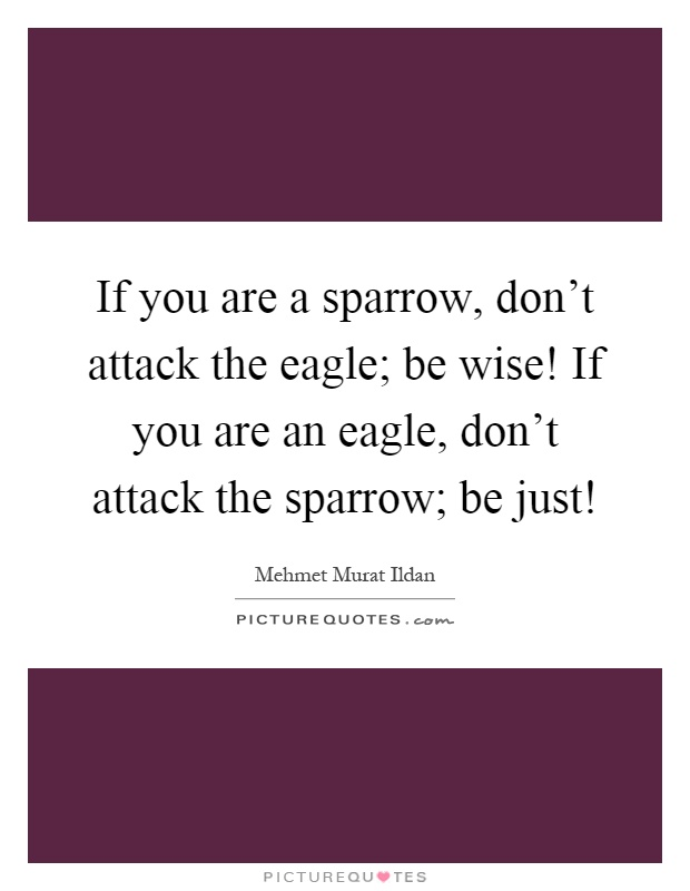 If you are a sparrow, don't attack the eagle; be wise! If you are an eagle, don't attack the sparrow; be just! Picture Quote #1