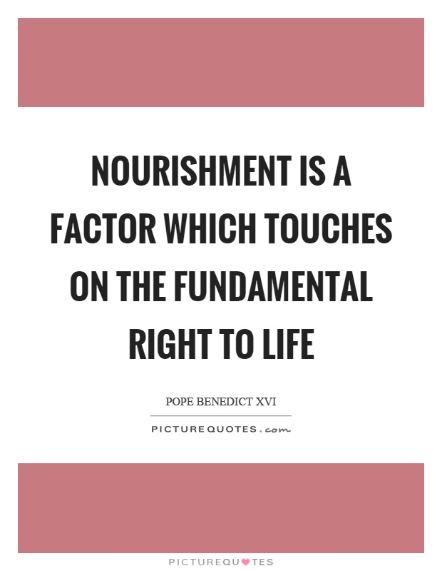Nourishment is a factor which touches on the fundamental right to life Picture Quote #1