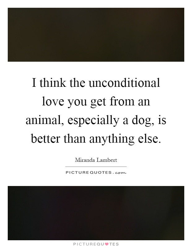 I think the unconditional love you get from an animal, especially a dog, is better than anything else Picture Quote #1