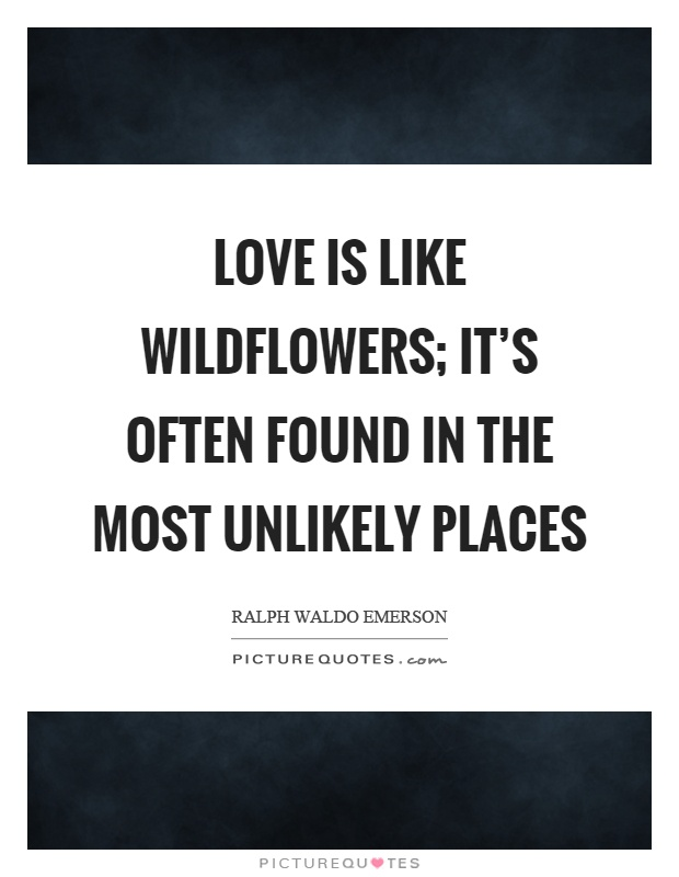 Love is like wildflowers; It's often found in the most unlikely places Picture Quote #1