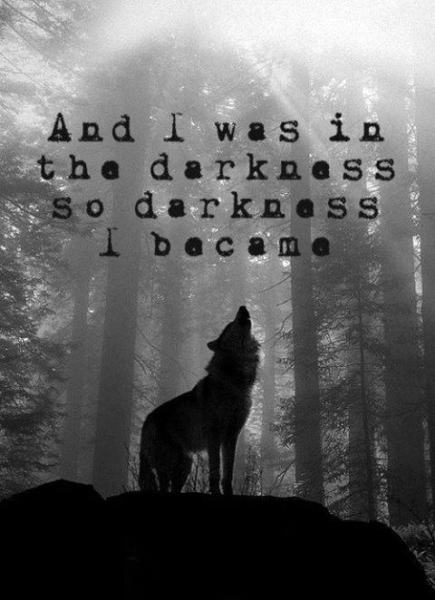 And I was in darkness, so darkness I became Picture Quote #1