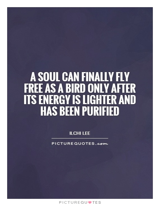 A soul can finally fly free as a bird only after its energy is lighter and has been purified Picture Quote #1