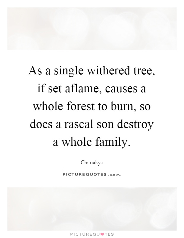 As a single withered tree, if set aflame, causes a whole forest to burn, so does a rascal son destroy a whole family Picture Quote #1
