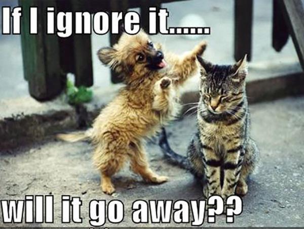 If I ignore it will it go away?? Picture Quote #1