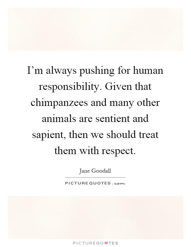 I'm always pushing for human responsibility. Given that chimpanzees and many other animals are sentient and sapient, then we should treat them with respect Picture Quote #1