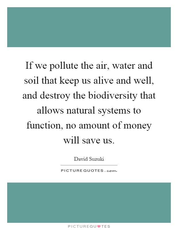 If we pollute the air, water and soil that keep us alive and well, and destroy the biodiversity that allows natural systems to function, no amount of money will save us Picture Quote #1