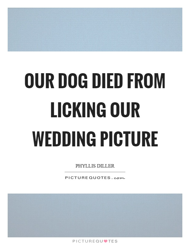Our dog died from licking our wedding picture Picture Quote #1